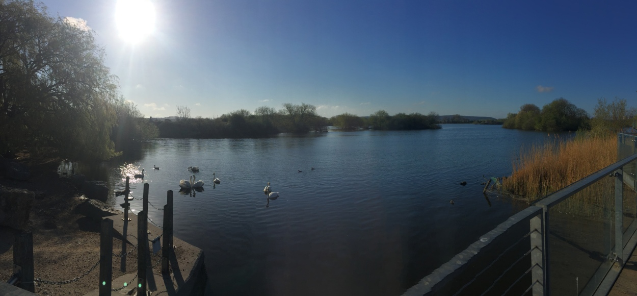 The Attenborough Nature Reserve